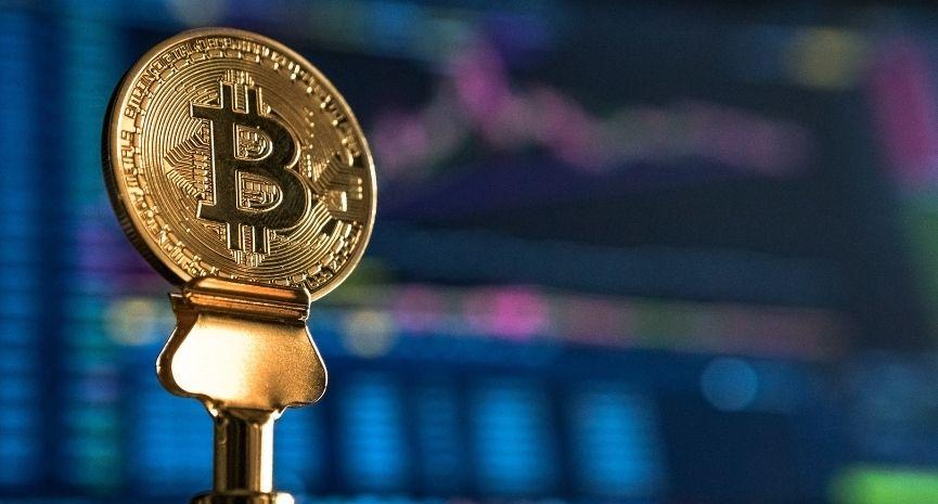 Bitcoin Whale (2020)