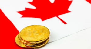 Best Bitcoin Wallets in Canada